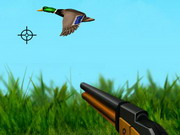 Play The Duck Hunter