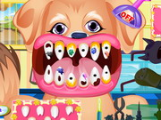 Állat fogászat