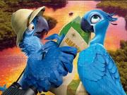 Papagáj kirakó