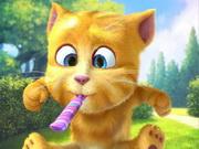 Ginger cica
