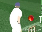 Play Cricket Challenge