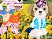 Puppy in the Field Dressup