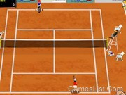 Play Grandslam Tennis