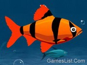 Play Franky the Fish 2